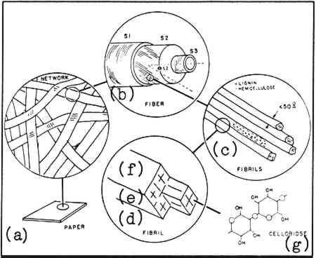 Jaic 1992 Volume 31 Number 1 Article 14 Pp 117 To 138
